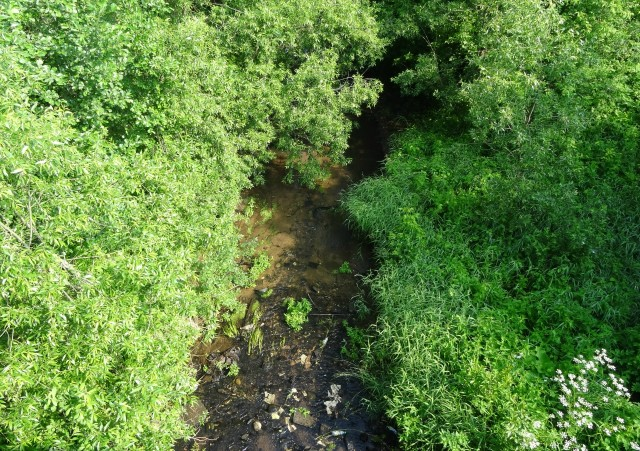 Река Свеча